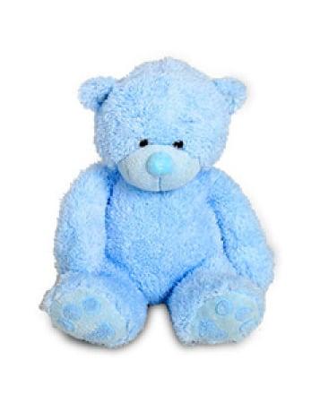 Blue Teddy Medium 21cm
