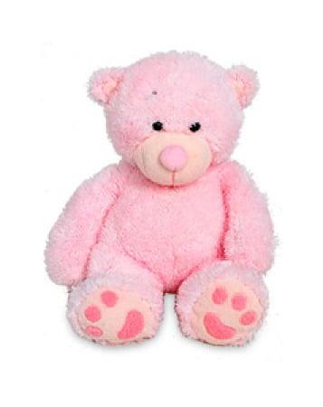 Pink Teddy Medium 21cm