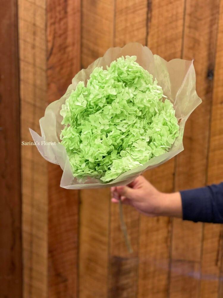 Green preserved hydrangea