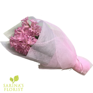 Wrapped Hyacinthus - Pink