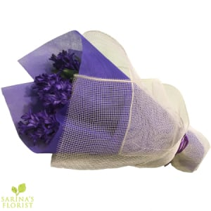 Wrapped Hyacinthus - Blue