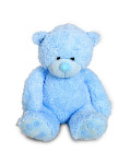 Blue Teddy Medium